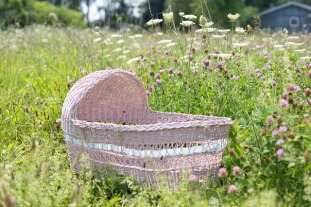 baby-bassinet-554083_640