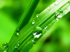 drop-of-water-7720_960_720