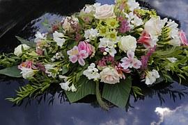 flowers-682829__180