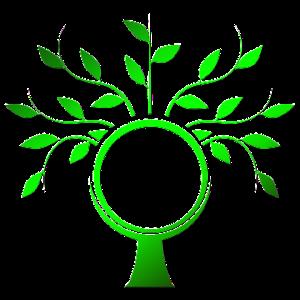 tree-990857_960_720